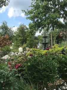 Vrt u objektu Nandino/ Nandino audio studio