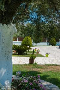 Κήπος έξω από το Eleana Studios