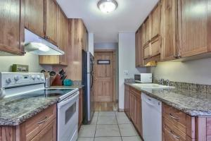 A kitchen or kitchenette at Mountain Apartment