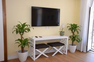 TV/Unterhaltungsangebot in der Unterkunft Lx Flowers Apartments