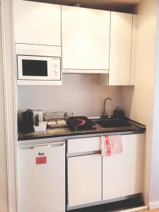 A kitchen or kitchenette at Apartamentos Madrid Titania