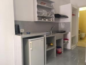 A kitchen or kitchenette at Studios Irineos