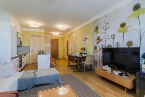 Телевизор и/или развлекательный центр в Prague deluxe apartment