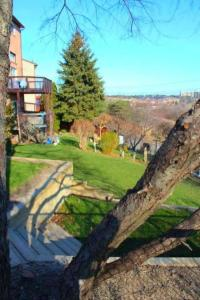 1-Br Park view Thornhill easy access to downtown Toronto, Richmond Hill and Markham (Andy)