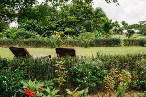 Bambu Getaway