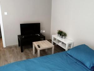 Télévision ou salle de divertissement dans l'établissement Appartements Le Vivier