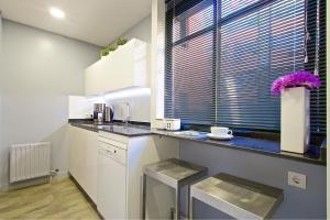 A kitchen or kitchenette at Habitat Apartments Latina Nature