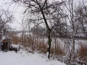 Nyugi Tanya during the winter