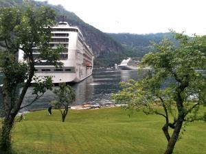 Fjorden Campinghytter