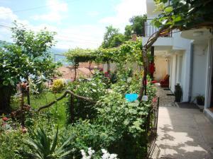Villa Saraj