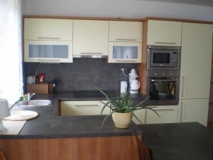 Küche/Küchenzeile in der Unterkunft Holiday House Nespeky