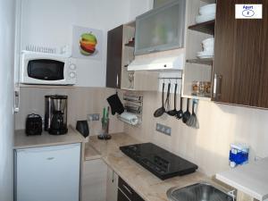 Кухня или мини-кухня в Sibiu-Heim-Apart
