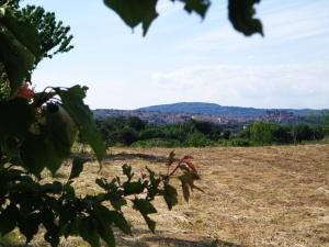 Agriturismo Fontelupo