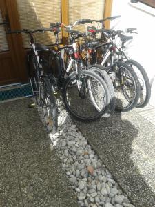 Vožnja biciklom pokraj objekta Apartments Nadija ili u blizini
