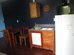 A kitchen or kitchenette at Axios Sun Apartments Caye Caulker