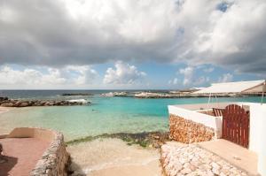 Dolphins Jump@Curacao Ocean Resort