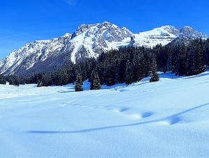 Campiglio Monolocale Cima Tosa during the winter