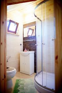 Łazienka w obiekcie Domki Sonar