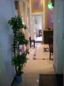 The lobby or reception area at Charming Three-Bedroom Apartment at Abdelkhalek Sarwat Street