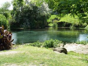 Spring Creek Holiday Park