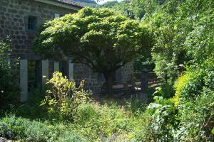 Jardin de l'établissement Domaine de Salomony