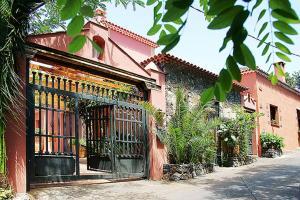 Nice house in Large Avocado Garden, Tenerife North