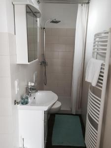 A bathroom at Ferienwohnung Koblenz