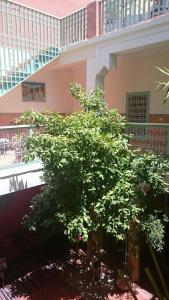 Riad Dar Nael