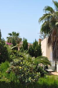 A garden outside Casa Lea