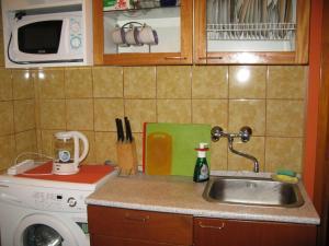 Apartaments at Kostyushko 88