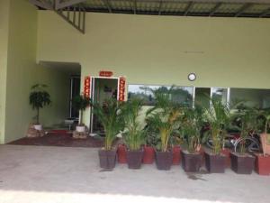 BOKOR BAY TONG Guesthouse