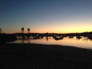 Corymbia Batemans Bay