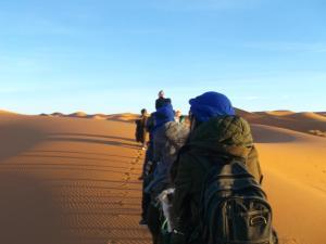 Camel Trekking Company