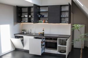 A kitchen or kitchenette at Apartment Penthouse Festina Lente