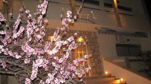 Un balcon sau o terasă la Villa Kokkinos