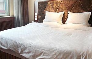 Hohhot Sulide Hotel