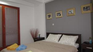 Apartment Vuchko