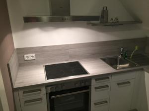 A kitchen or kitchenette at Elbsandstein Apartments