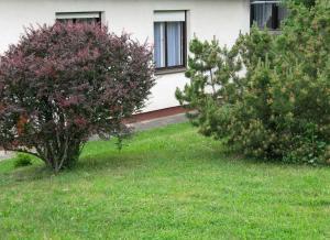 Budai Garden House