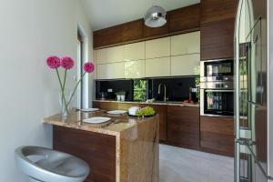 Virtuvė arba virtuvėlė apgyvendinimo įstaigoje P&O Apartments Liwiecka