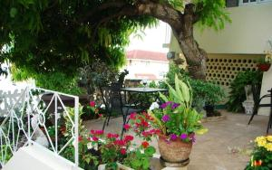 (Mango Tree Peaceful Pension)