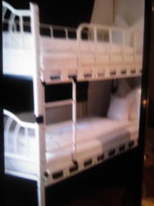 Ein Etagenbett oder Etagenbetten in einem Zimmer der Unterkunft Apartment Schreyl