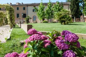 A garden outside Villa Borri