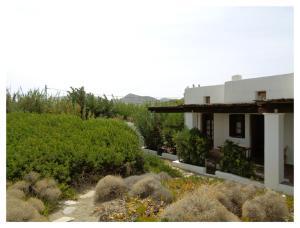 A garden outside Skyros Studios