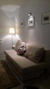 Apartament Cassino