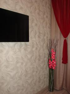 Телевизор и/или развлекательный центр в Апартаменты на Чехова