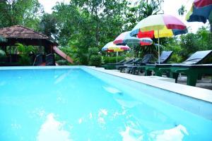Jungle Paradise Holiday Resort