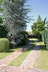 A garden outside Feriendomizil Hönow