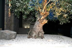 Olive Charm Studio Mansarda