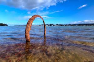 Headland Haven